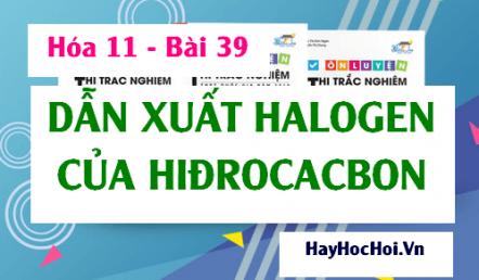 Dẫn xuất Halogen của Hiđrocacbon tính chất hóa học, tính chất vật lý của dẫn xuất Halogen - Hóa 11 bài 39
